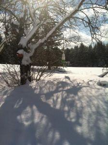 snowbuoyfeb2015